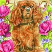 King Charles Spaniel Art Print