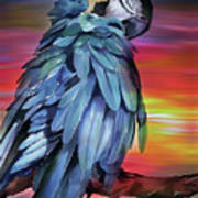 King Parrot 01 Art Print