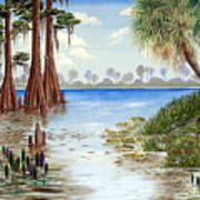 Kissimee River Shore Art Print
