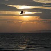 Kite Sunset Art Print