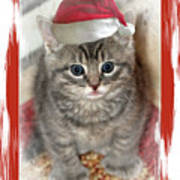 Kitten Playing Santa  Art Print