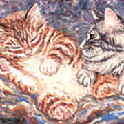 Kittens Sleeping Art Print