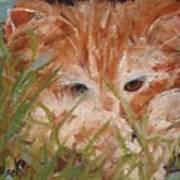 Kitty Adventures Art Print