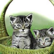 Kitty Caddy Art Print