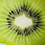 Kiwi Cut Art Print