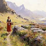 Knitting In A Norwegian Landscape Art Print
