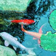 Koi Pond 4 Art Print