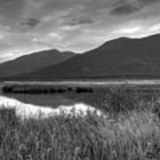 Kootenay Marshes In Black And White Art Print