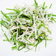 Korean Traditional Fresh Vegetable Salad Art Print