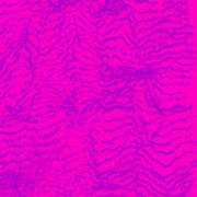 L9-64-155-0-217-255-0-194-2x3-1000x1500 Art Print