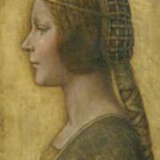 La Bella Principessa - 15th Century Print by Leonardo da Vinci