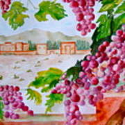 La Casa Del Vino Art Print