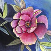 La Flora  Art Print