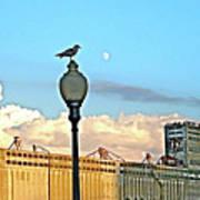 La Lune L'oiseau L'usine Art Print