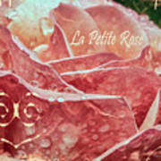 La Petite Rose Art Print