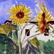 La Romita Sunflowers Art Print