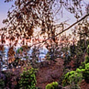 L A Skyline With Griffith Observatory - Panorama Art Print