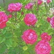 La Vie En Roses Art Print by Jen White