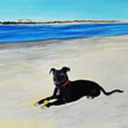 Lab Loving The Beach Art Print