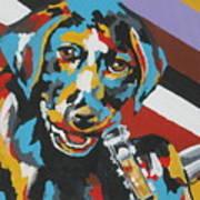 Labrador Puppy  Art Print