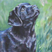 Labrador Retriever Pup And Dragonfly Art Print
