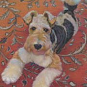 Wire-haried Fox Terrier Art Print