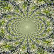 Lacey Kaleidoscope Art Print