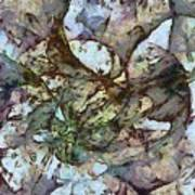 Ladderlike Taste  Id 16098-014755-31540 Art Print