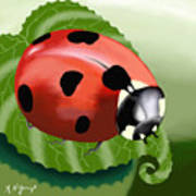 Ladybug On Leaf Art Print