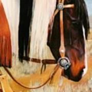 Ladys Jewels Horse Painting Portrait Art Print