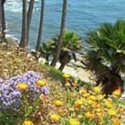 Laguna Beach, Southern California 12 Art Print