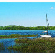 Lake At Hamony Fl Art Print