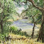 Lake At St Remy Art Print