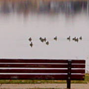 Lake Bench Art Print