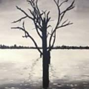 'lake Bonney' Art Print