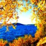 Lake Coeur D'alene Through Golden Leaves Art Print