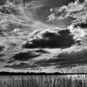 Lake Dora Black And White Art Print
