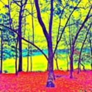 Lake Eyed Art Print