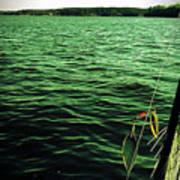 Lake Murray Lure Art Print