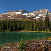 Lake O'hara, Yoho National Park Art Print