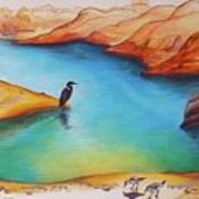 Lake Powell Birds Art Print