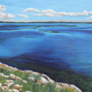 Lake Toho Art Print
