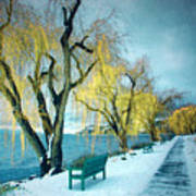 Lakeshore Walkway In Winter Art Print