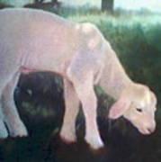 Lamb Of God Art Print
