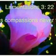 Lamentations His Compassions Never Fail Art Print