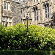 Lamppost In Front Of Green Bushes And Old Walls. Art Print