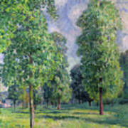 Landscape At Sevres Art Print by Alfred Sisley