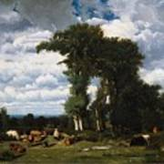 Landscape With Cattle At Limousin Art Print