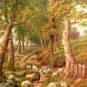 Landscape With Sheep Print by Charles Joseph