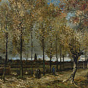 Lane With Poplars Art Print